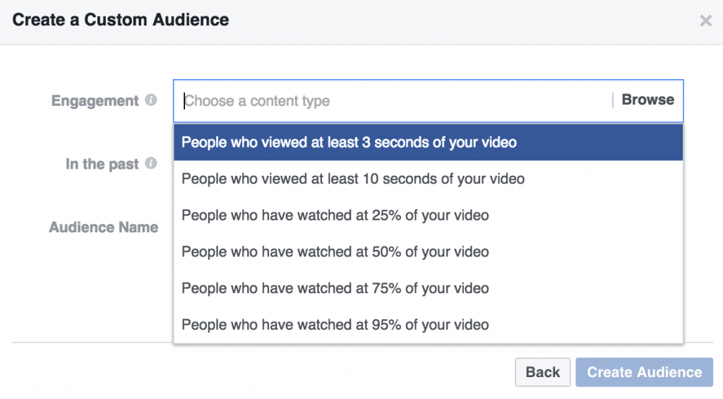 Video View Custom Audience